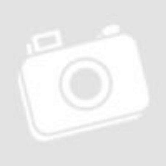 Turnigy nano-tech 1000mah 3S 20-40C Lipo Airsoft akkumulátor 9210000129-0